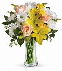 Daisies and Sunbeams from Schultz Florists, flower delivery in Chicago